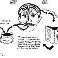 Il cibo è memoria. La madeleine di Proust